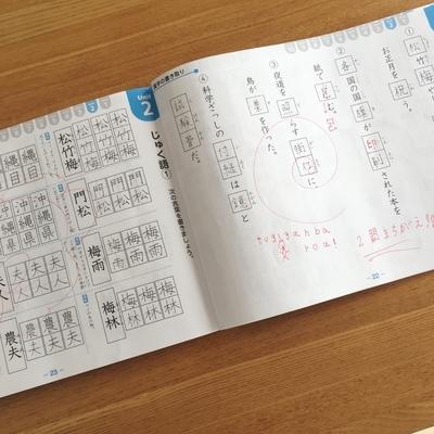 f:id:berry-no-kurashi:20210624174404j:plain