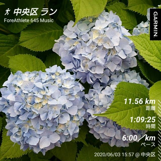 f:id:berry42195:20200603205500j:image