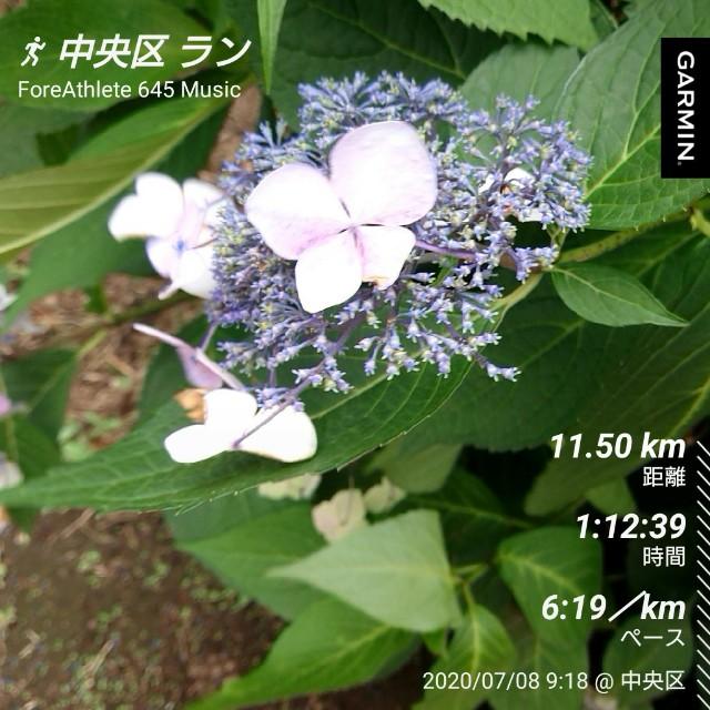 f:id:berry42195:20200708144532j:image