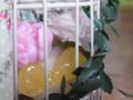 [スイーツデコ][カップケーキ][リボン][鳥かご]RentalBox-201210_7