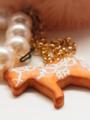 [スイーツデコ][クッキー][ファー][真珠][木馬]RentalBox-201304_09
