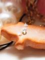 [スイーツデコ][クッキー][ファー][真珠][ブタ][ハイヒール]RentalBox-201304_15