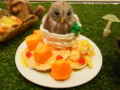 [チャレンジ徳島芸術祭][スイーツデコ][パンケーキ][マンゴー][フクロウ]CTAF2014-ER_33