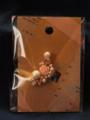 [アクセサリー][バラ][土星][スワロフスキー][コットンパール][イヤリング]RentalBox-201411_33