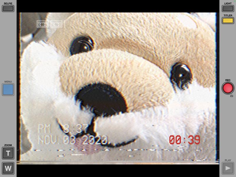 f:id:bibinbaleo:20201103211211p:plain