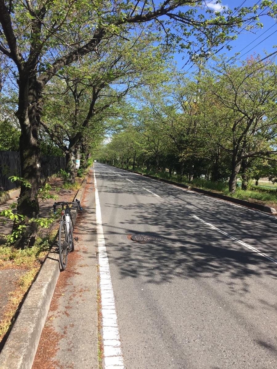 f:id:bicycle-Hiroki:20200419173929j:plain