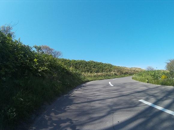 f:id:bicycle-sapp:20170521220715j:plain