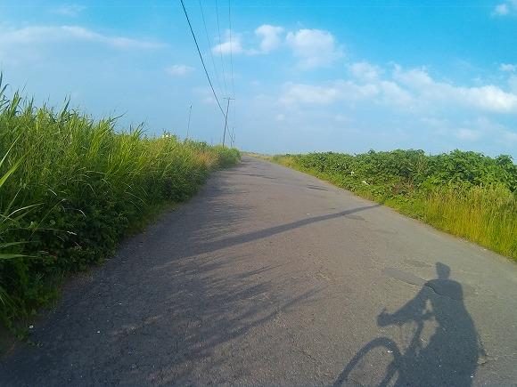 f:id:bicycle-sapp:20170715221344j:plain