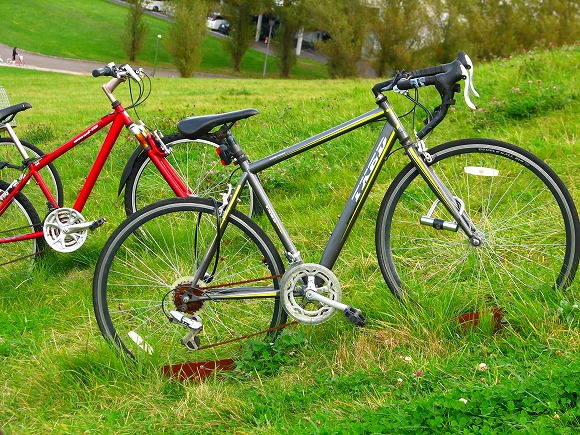 f:id:bicycle-sapp:20171001211555j:plain