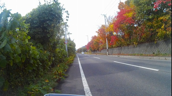 f:id:bicycle-sapp:20171009202940j:plain
