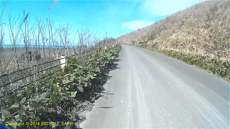 f:id:bicycle-sapp:20200509202757j:plain