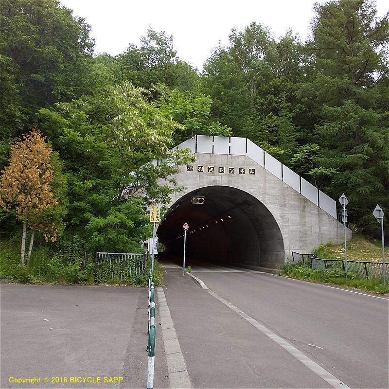 f:id:bicycle-sapp:20200616204533j:plain
