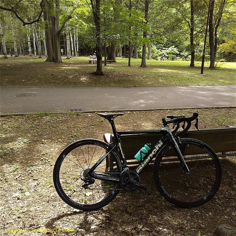 f:id:bicycle-sapp:20200616204909j:plain