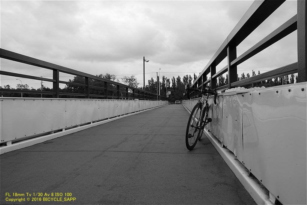 f:id:bicycle-sapp:20201001205628j:plain