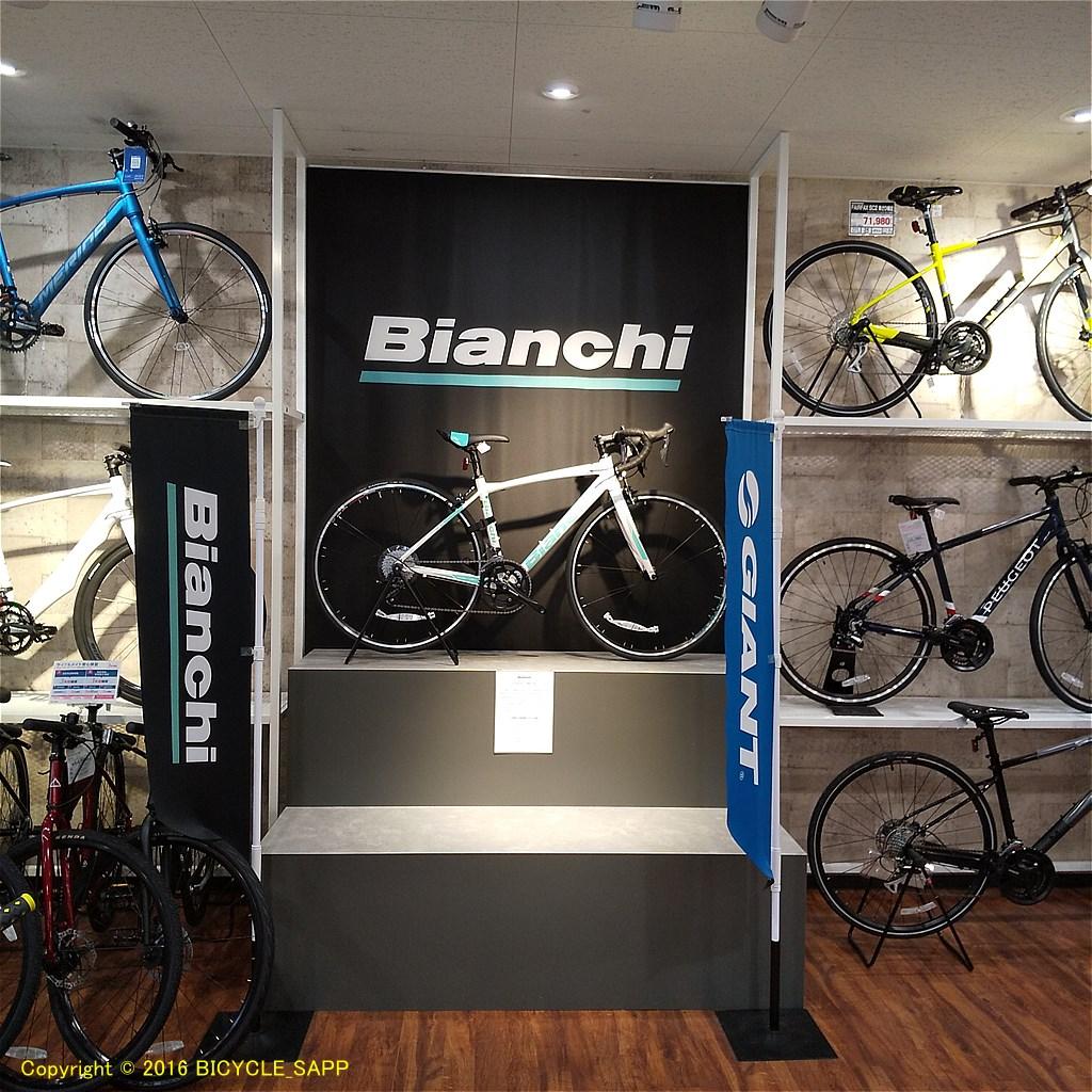 f:id:bicycle-sapp:20201116213027j:plain