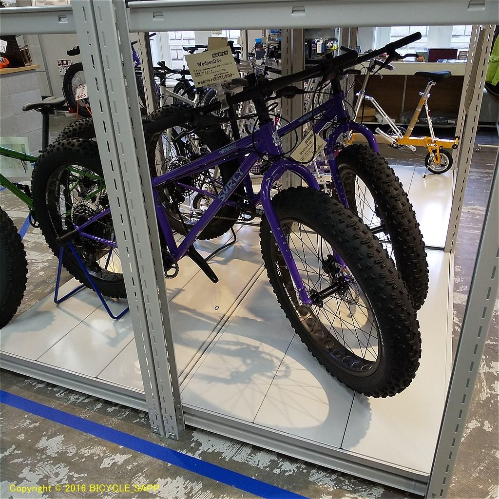 f:id:bicycle-sapp:20201122205400j:plain