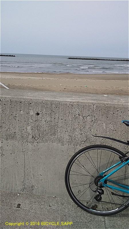 f:id:bicycle-sapp:20210323212521j:plain