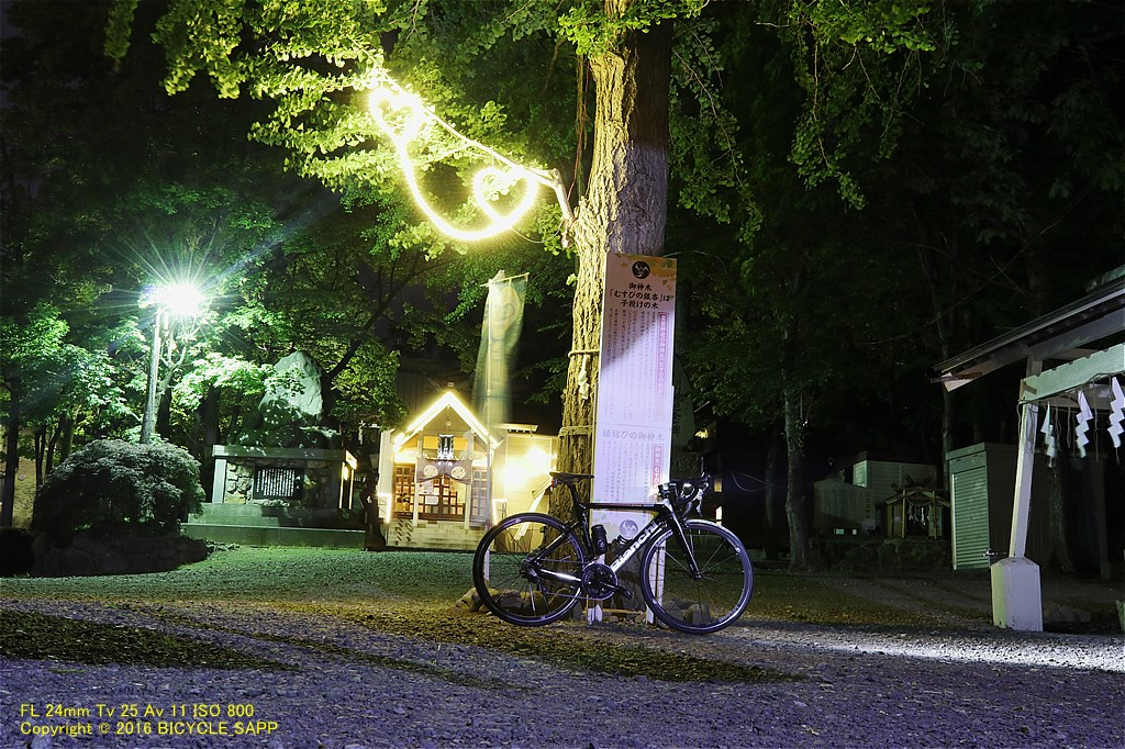 f:id:bicycle-sapp:20210616203317j:plain