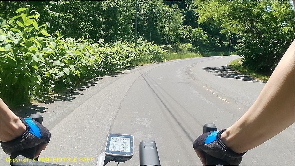 f:id:bicycle-sapp:20210707220645j:plain