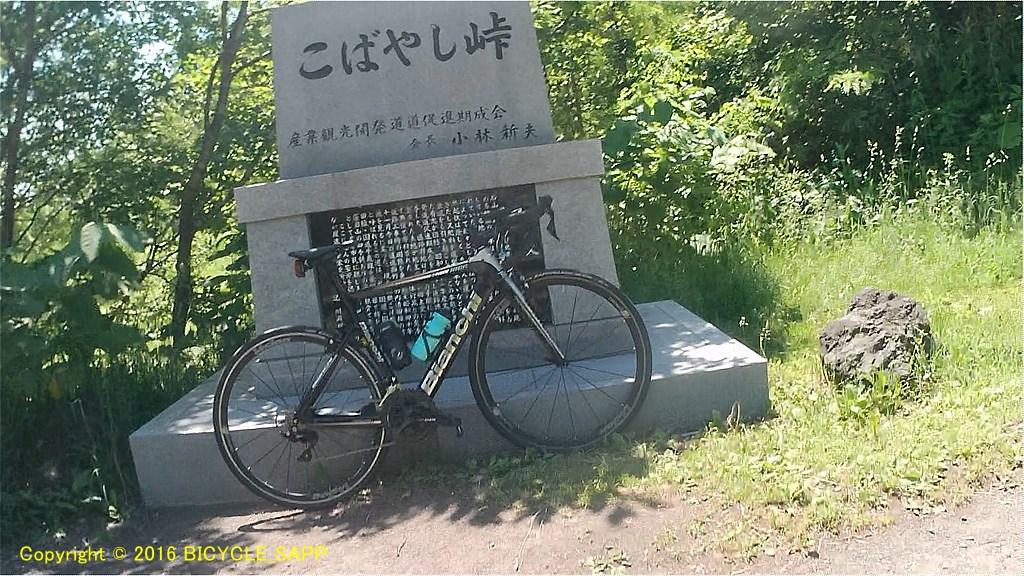 f:id:bicycle-sapp:20210707220706j:plain