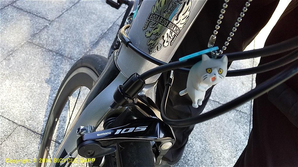 f:id:bicycle-sapp:20210707220837j:plain