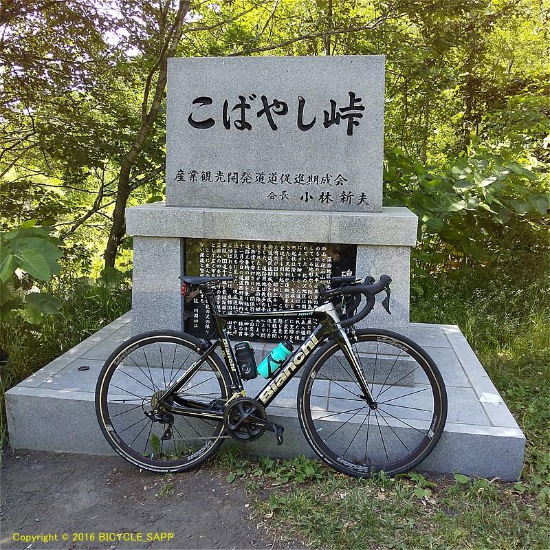 f:id:bicycle-sapp:20210724202227j:plain