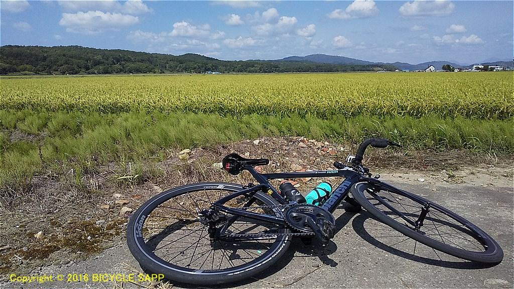 f:id:bicycle-sapp:20210822223530j:plain