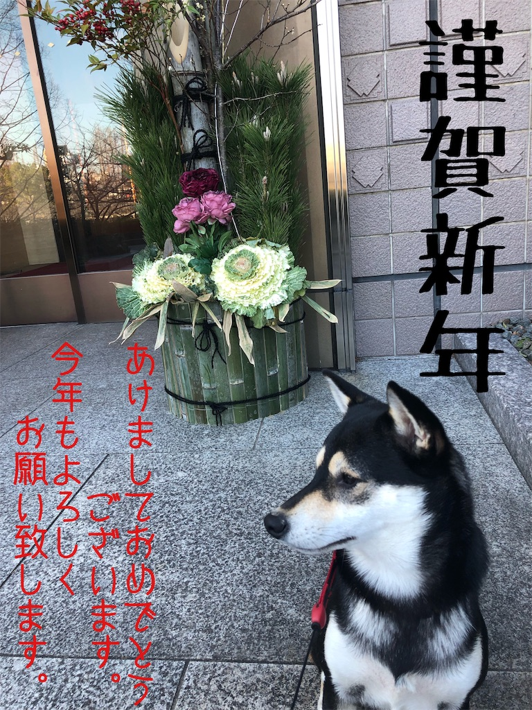 f:id:big-yamatohou:20190103162026j:image