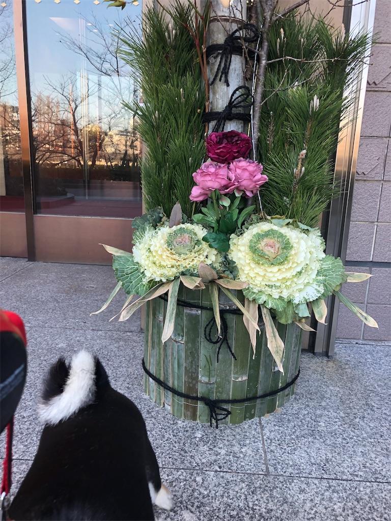 f:id:big-yamatohou:20190103162229j:image