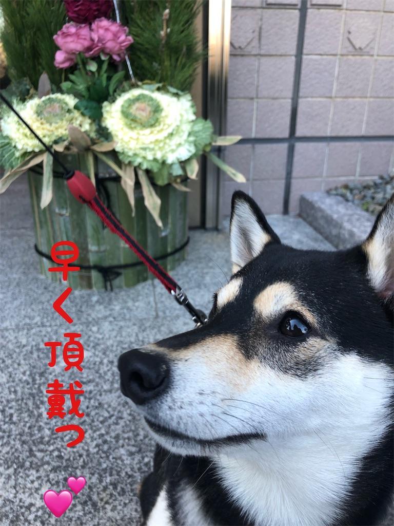 f:id:big-yamatohou:20190103162234j:image