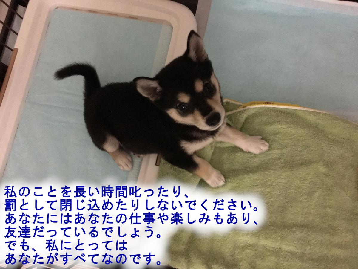 f:id:big-yamatohou:20190420213034j:plain