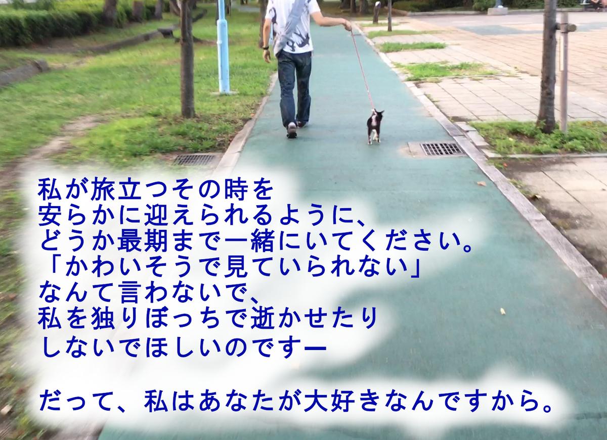 f:id:big-yamatohou:20190420213347j:plain