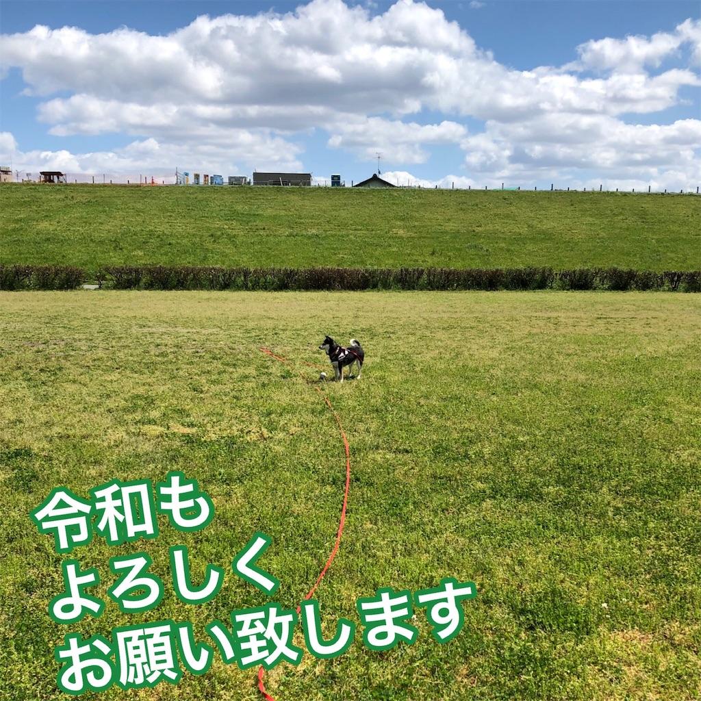 f:id:big-yamatohou:20190501205520j:image