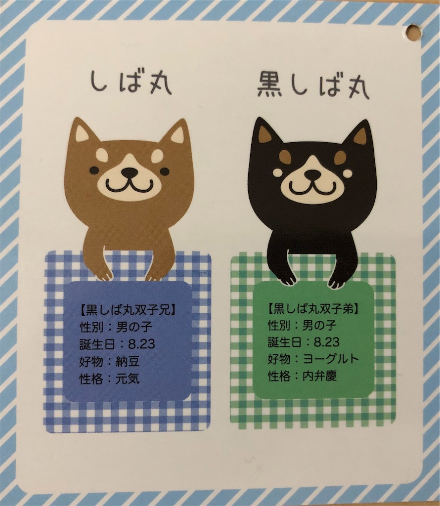 f:id:big-yamatohou:20190716013833j:plain