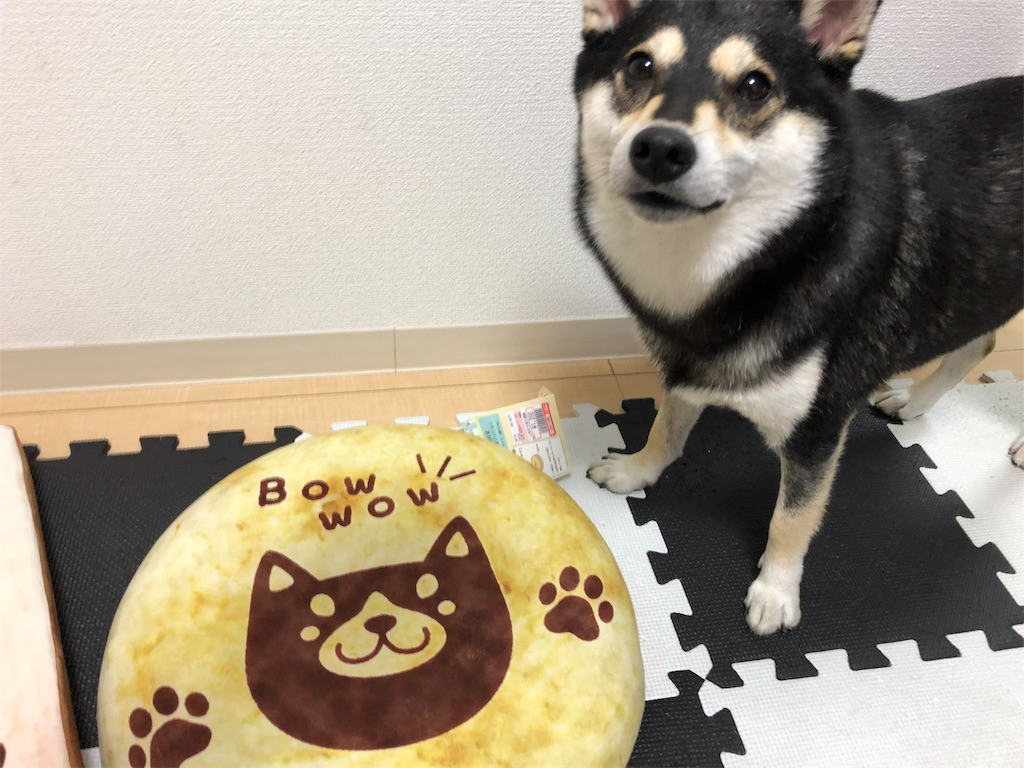 f:id:big-yamatohou:20190824201503j:plain