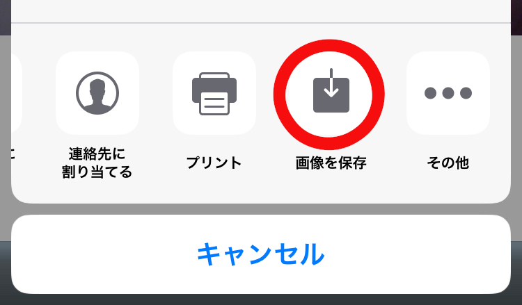 f:id:big-yamatohou:20190904003825j:plain