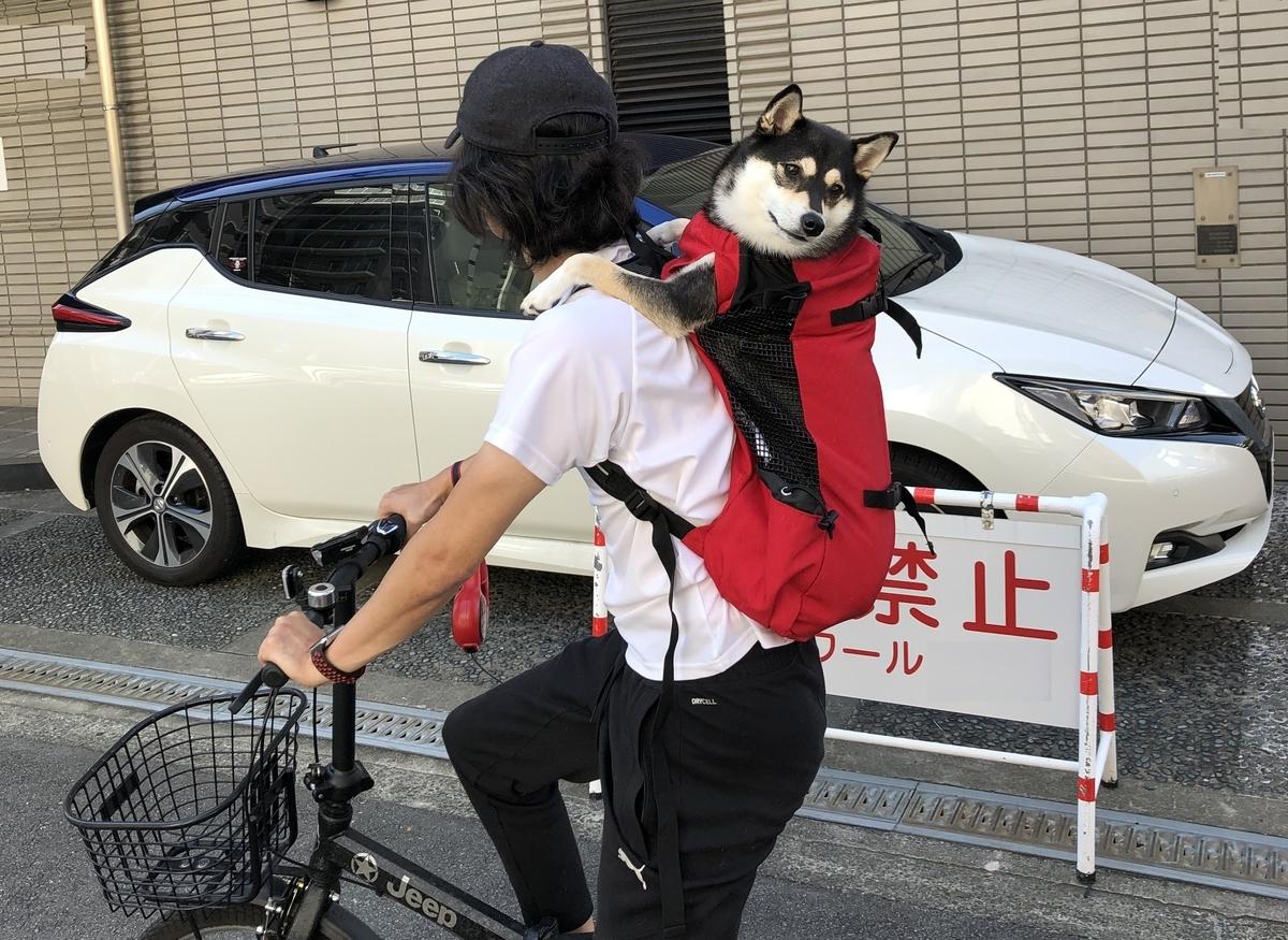 f:id:big-yamatohou:20190915173936j:plain