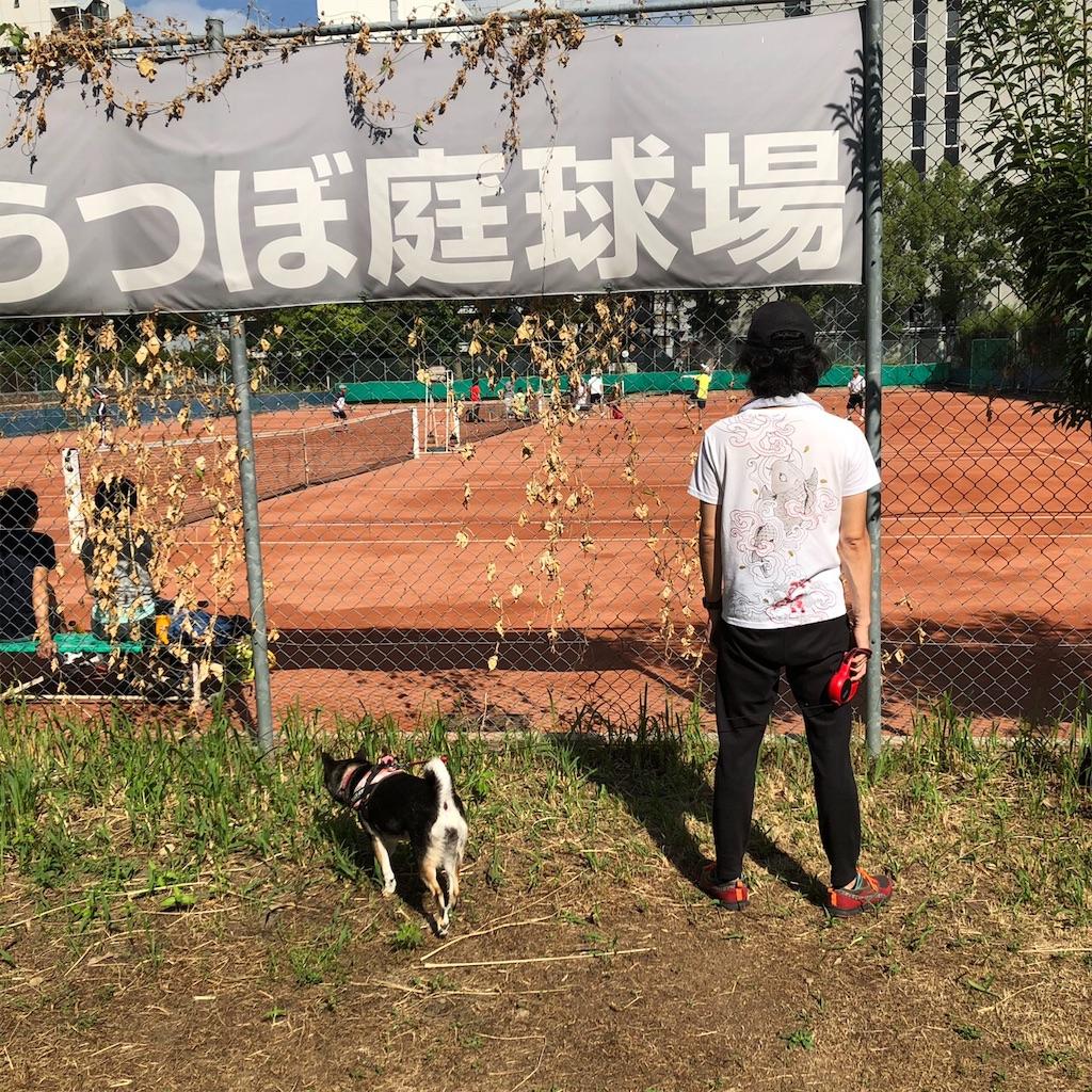 f:id:big-yamatohou:20191006033543j:image