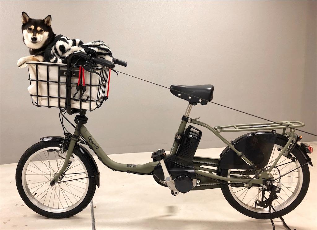 犬 乗せ 電動自転車
