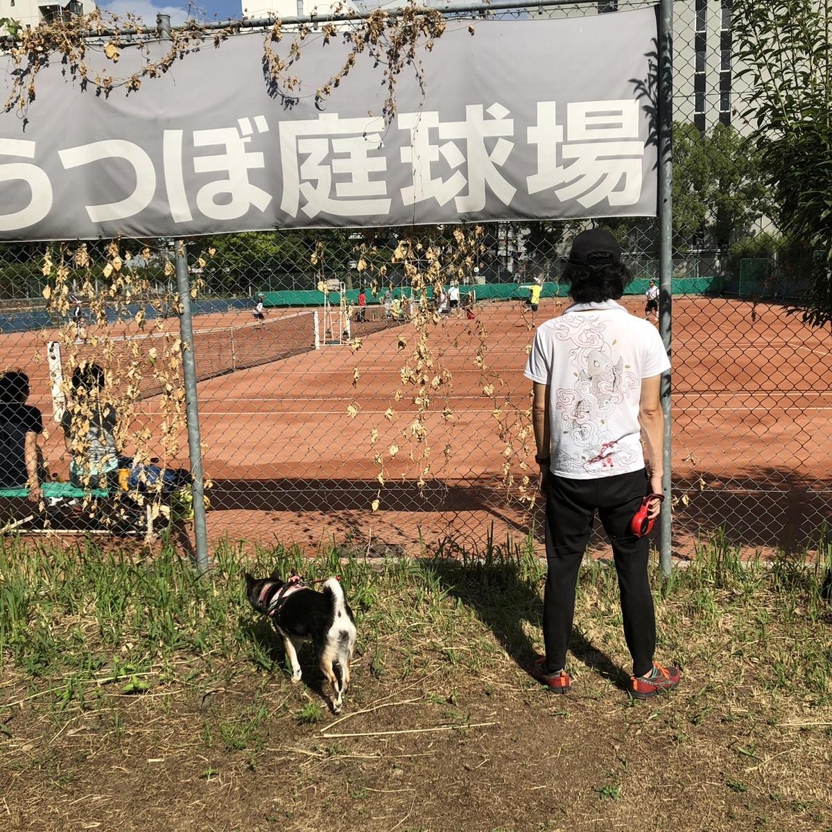f:id:big-yamatohou:20200323000504j:plain