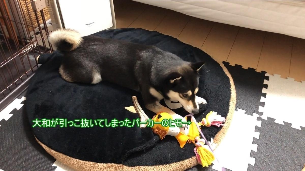 f:id:big-yamatohou:20200802230245j:plain