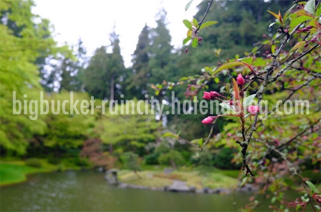 f:id:bigbucket-raincity:20170423165100j:image