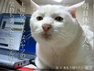 f:id:bigkushiroekimae:20160625141718j:plain