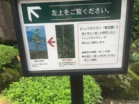 f:id:bigkushiroekimae:20160802201725j:plain