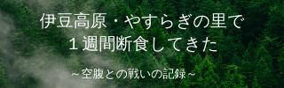 f:id:bignakabu:20210208113335p:plain