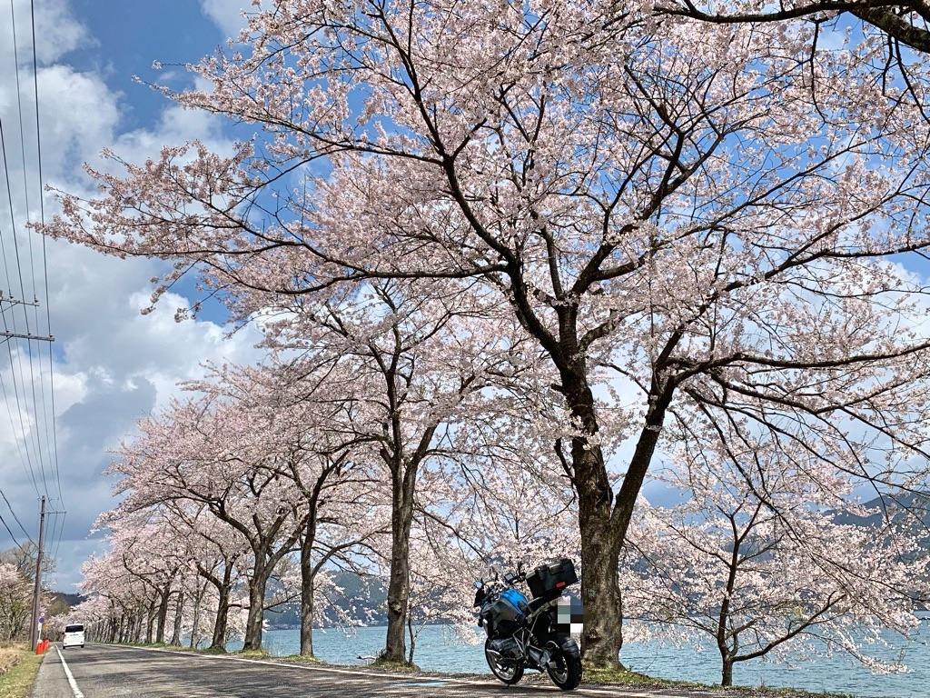f:id:bikedaisukitoshicyani:20210306213729j:image
