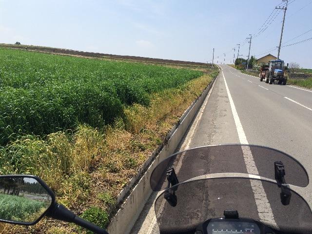 f:id:bikedane:20150501172331j:image