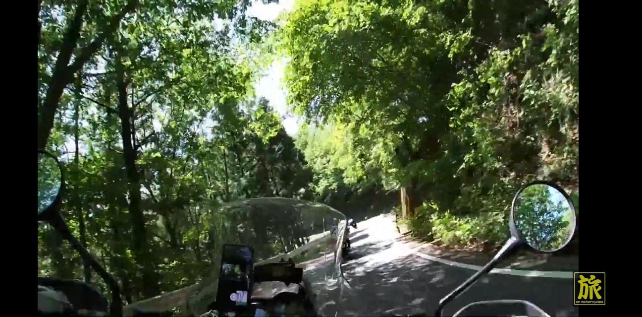 f:id:bikedane:20190609134443j:image