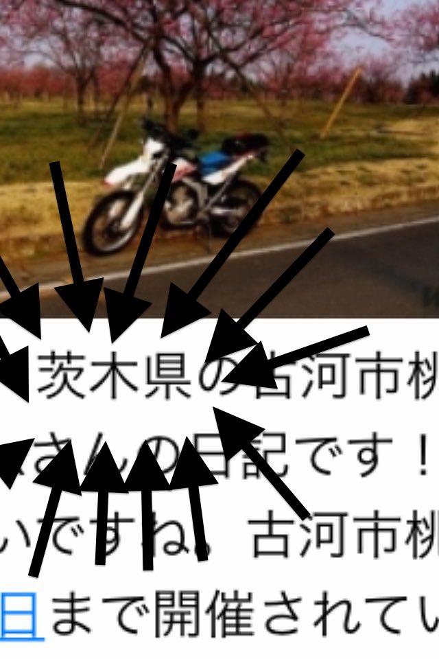 f:id:bikehosi:20170327194522j:plain