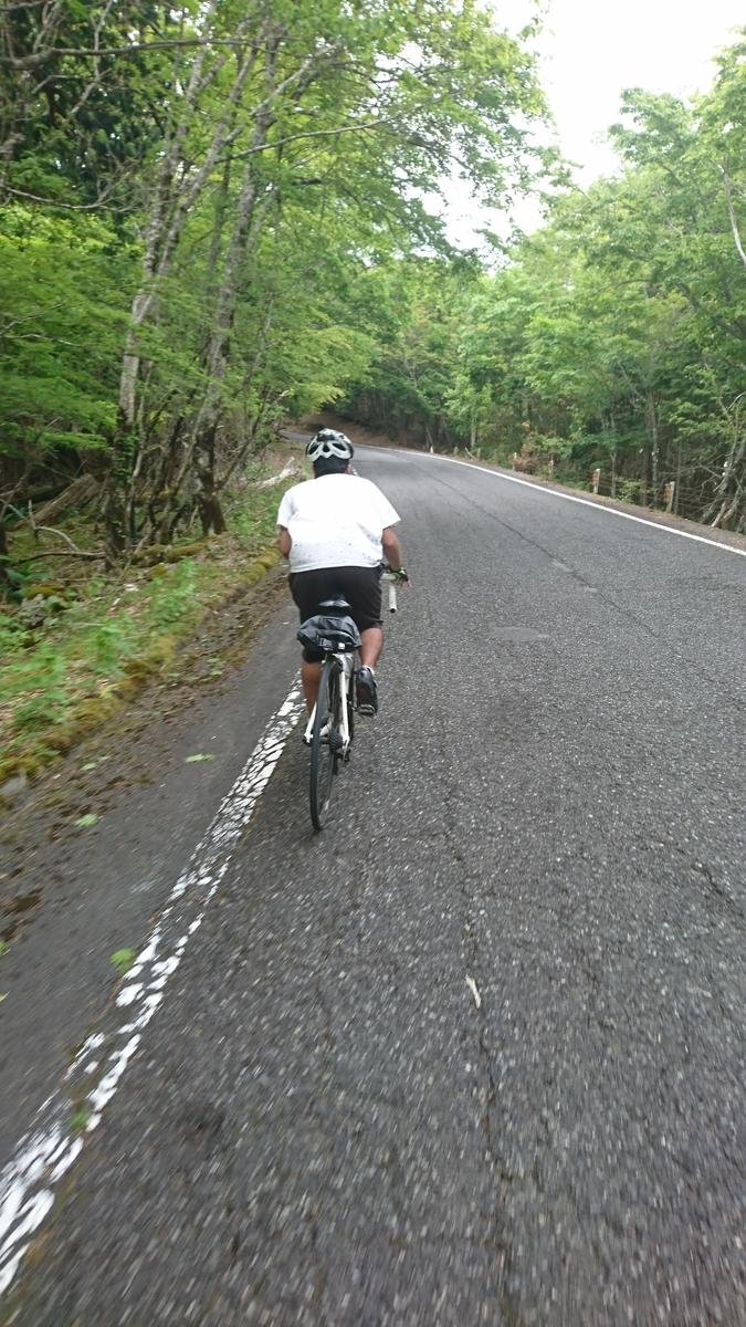f:id:bikesato:20200531233549j:plain